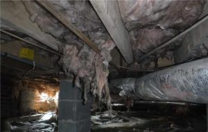 Crawl Space Waterproofing | Columbus, OH